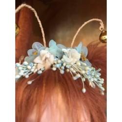 Mistletoe C
