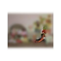 Giacinto G